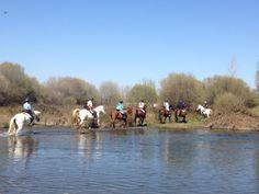 Vadeando el Río #Bullaque, en una expedición a caballo, este invierno por Cabañeros Dolores Park, Travel, Paths, Winter, Activities, Viajes, Destinations, Traveling, Trips