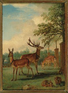 Philips Wouwerman, Herten en konijnen in een park (Deer and rabbit in a park), 1640/68 (collection) #art #franshalsmuseum #painting #deer
