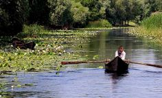 Danube Delta, Romania ---> 129 Places Worth Visiting Once in a Lifetime (part. Places Around The World, Travel Around The World, Places To Travel, Places To See, Tourist Places, Danube River Cruise, Danube Delta, Places Worth Visiting, Shore Excursions