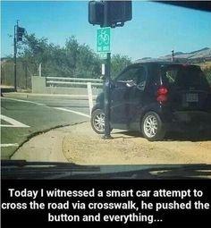 Less than Smart Car crossing. #carmeme #mememonday