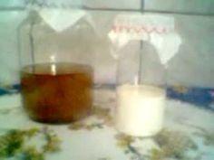 Kefir de água e Kefir de leite