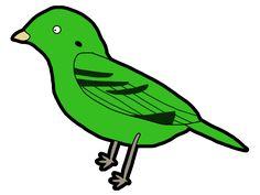 Green Broadbill / #QUXGA #Animal #Bird #ミドリヒロハシ