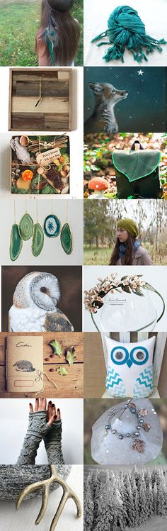 Walk In The Woods Wednesday by Haley Nicole on Etsy--Pinned with TreasuryPin.com