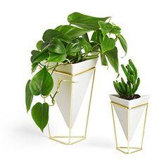 amazon umbra desktop planter vase & geometric container / great for succulent plants, air plant, faux plants and more