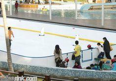 Ultra glide ice rinks Synthetic Ice Rink, Ice Hockey, Ice Skating, Basketball Court, Korea, Skating, Korean, Hockey Puck, Hockey