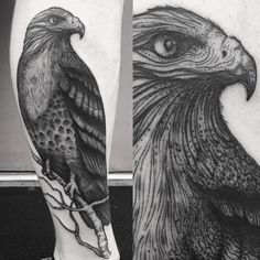 "2,389 Likes, 63 Comments - solo tattoo studio and gallery (@dinonemec) on Instagram: ""Thank you Duell from North Dakota! This is ""Hope"" the hawk, I based the design on a real rescued…"""