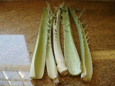 Fried Cardoons (Carduni) - Recipes and Ramblings in Italy