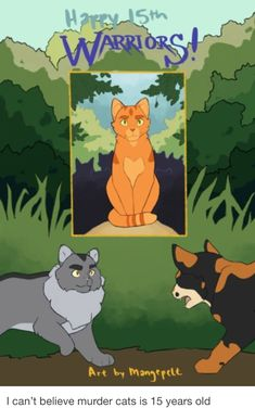This is funny and true at the same time. Warrior Cats Funny, Warrior Cats Series, Warrior Cats Books, Warrior Cats Fan Art, Warriors Erin Hunter, Love Warriors, Forest Cat, Cat Boarding, Book Series