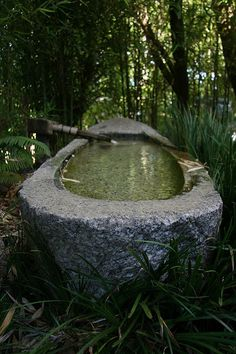 Japanese Tea Garden, Golden Gate Park, San Francisco, California, USA | Flickr - Photo Sharing!