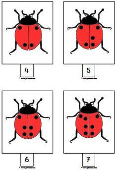 Insecten downloads » Juf Sanne