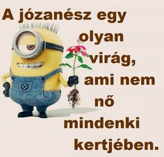 Minions, Diy And Crafts, Words, Funny, Funny Parenting, Minion, Minions Love, Entertaining, Hilarious