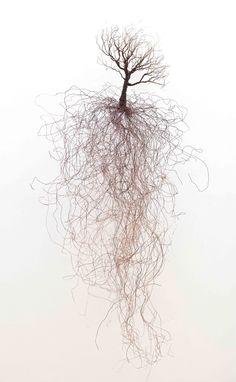 Shane Pennington, copper wire sculpture