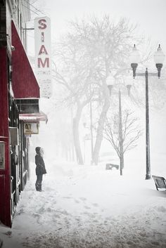 Let It Snow - I Love love love snow and winter - I wanna be the girl in the picture and stay there all day long. I Love Winter, Winter Day, Winter Is Coming, Winter Christmas, Christmas Decor, Winter Magic, Winter's Tale, Winter Scenery, Snowy Day
