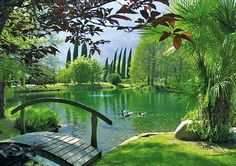 Für Tagträumer und Wellness Liebhaber: träumen Sie sich in den magischen Garten des Du Lac et Du Parc Grand Resort. Mehr Erholung geht nicht! #natur #erholung #wellness  Hier geht's zum Hotel: http://www.travelcircus.de/du-lac-et-du-parc-grand-resort