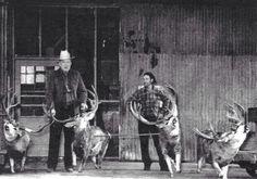 Old school mule deer hunt.