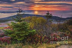This image was photographed from the top of Cadillac Mountain.