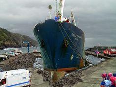 PORTO DA CALHETA: Escala Trágica no Porto da Calheta