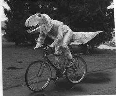 Dino on a bike