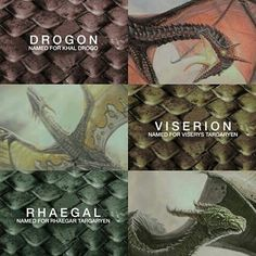 Game of Thrones Drogon, Viserion and Rhaegal #thehousegameofthrones #housegameofthrones #thegameofhrones #daenerysdragons