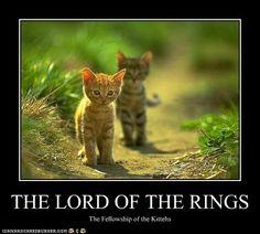 Wait for me, Mister Frodo!
