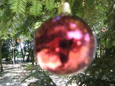 Christmas Balls, Christmas Tree, Christmas Ornaments, Italy Art, Verona Italy, Video Installation, Tree Photography, Videos, Bulb