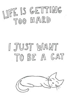 I just want to be a cat.