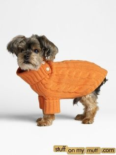 Love this! Getting Aggie one for when the CA winter hits!