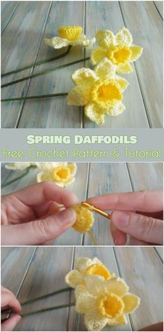 Spring Daffodils Free Pattern and Video Tutorial. Daffodils are beautiful, evocative of spring and qSpring Daffodils Free Sample and Video Tutorial. Daffodils are stunning, evocative of spring and fairly unmistakable. They translate into crochet stit Marque-pages Au Crochet, Beau Crochet, Crochet Mignon, Crochet Amigurumi, Crochet Crafts, Crochet Projects, Crochet Roses, Crochet Stars, Crochet Birds