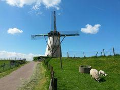 molen Nieuw- en Sint Joosland