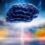 Ciencia: Así procesa el miedo el cerebro