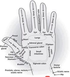 Reflexology- hand