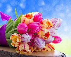 цветы на фото – 10