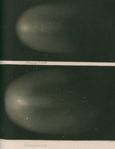 Halley's Comet, 7 and 12 February 1836 by James Basire III - print