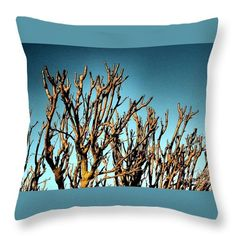 Throw Pillow featuring the photograph Branches Of The Amoreira by Dora Hathazi Mendes #throwpillow #homedecor #dorahathazi