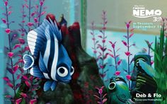 Finding Nemo - Deb