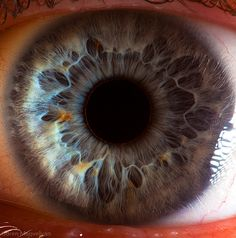 Photographer Suren Manvelyan's intriguing macro shots reveal the complex and intricate details of the human eye.