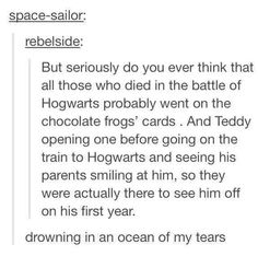 The Battle of Hogwarts May 1998 - Teddy Lupin Harry Potter Brief, Harry Potter Love, Harry Potter Universal, Harry Potter Fandom, Harry Potter Memes, Harry Potter Fan Theories, Scorpius And Rose, Must Be A Weasley, Teddy Lupin