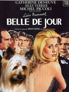 Belle De Jour is a 1967 Drama, Indie film directed by Luis Buñuel and starring Catherine Deneuve, Michel Piccoli. Silky Terrier, Catherine Deneuve, Roman Polanski, Jean Sorel, Michel Piccoli, Jacques Demy, Luis Bunuel, Tv Movie, Francois Truffaut