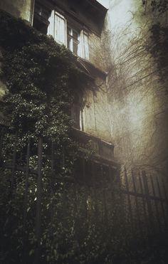 Laura Makabresku #house #dark #mood