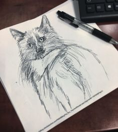 Doodles at work : : : : : : : : Doodles at work ✍🏻 : : : : : : : : Chiropractic Therapy, Cat Doodle, Sketch Art, Cats Of Instagram, Doodles, Drawings, Artist, Simple Cat Drawing, Artists