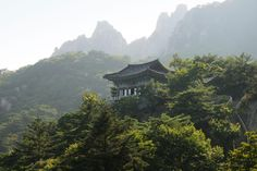 A peaceful, meditative retreat may be the key to resetting and connecting with the inner self. Across South Korea, temples open their gates for visitors to experience authentic temple life on its grounds. Attend Buddhist services, tea ceremonies, different meditation practices and conversations with monks...