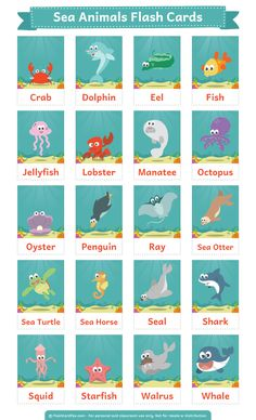Free printable sea animals flash cards. Download the PDF at http://flashcardfox.com/download/sea-animals-flash-cards/