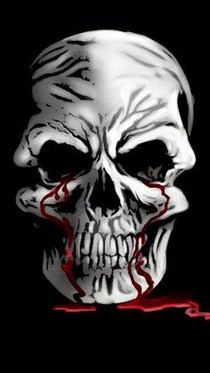 This is one amazing skull