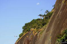 Pão de Açucar, Urca, Rio de Janeiro  Tudo no céu: lua, avião e passáros na encosta do Pão de açúcar #coisado rio #norumo http://delcueto.wordpress.com