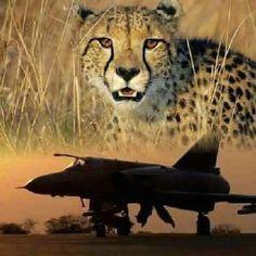 Art N Craft, South Africa, Air Force, Aircraft, African, Military, War, Animals, Animais