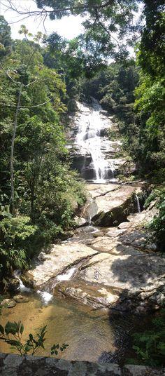 Floresta da Tijuca - Rio de Janeiro