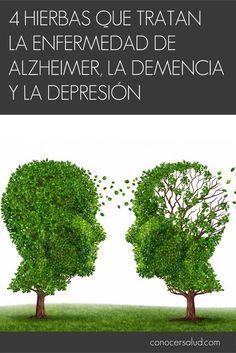 4 hierbas que tratan la enfermedad de Alzheimer la demencia y la depresión #salud