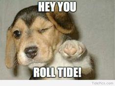 Hey You! | Alabama Crimson Tide Pictures | TidePics.com