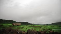 The Sahayadri Green. Monsoon colours on the Western Ghats of India