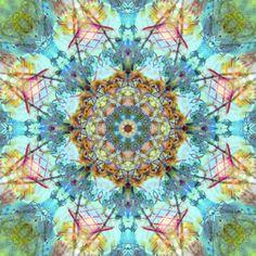 Beauty Of All Flowers Mandala by Alaya Gadeh